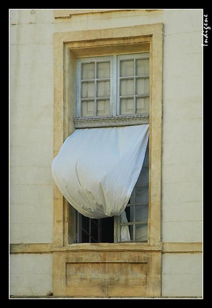 Le rideau à la fenêtre