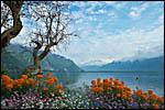 photo Le Lac Léman