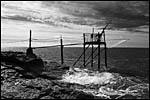 photo Carrelet sur les côtes de Vendée