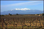 photo Le Mont Canigou