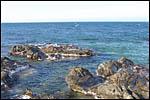 photo Les criques à Collioure