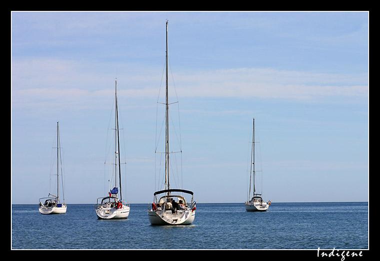 Les petits voiliers