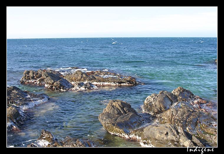 Les criques à Collioure