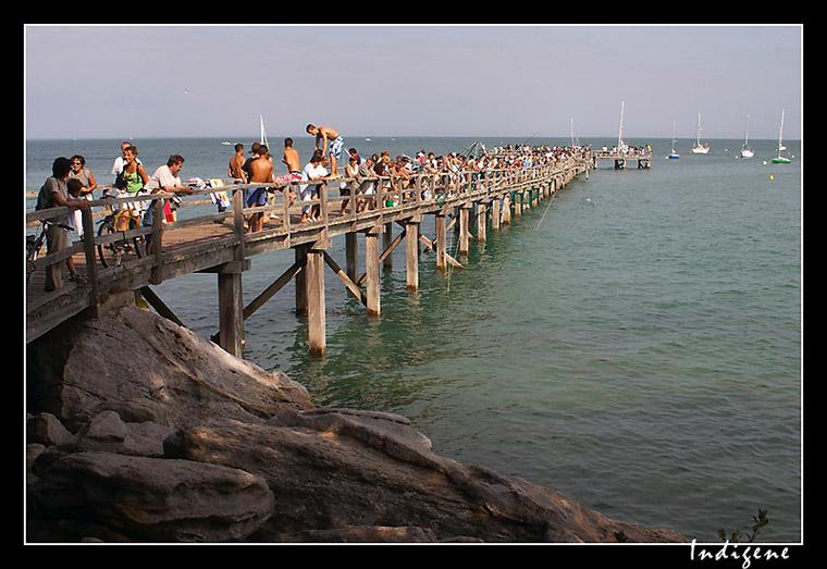 Pont de bois à Noirmoutier