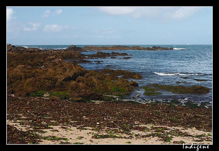 Le littoral de l'île d'Yeu