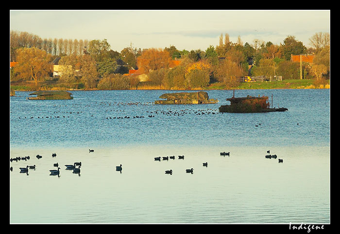L'étang Amaury