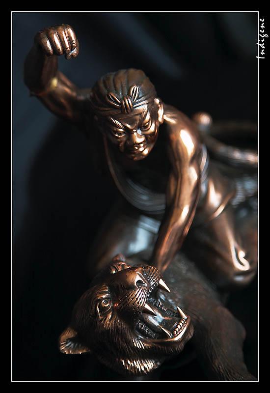 Combat de tigre