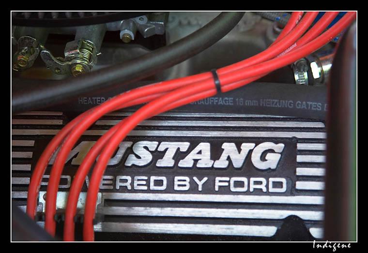 Moteur Mustang