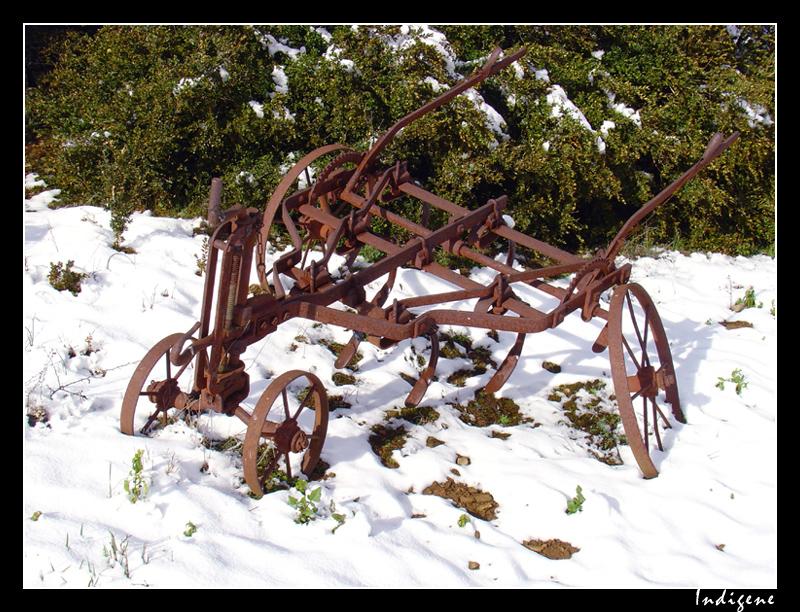 Charue rouillée sous la neige