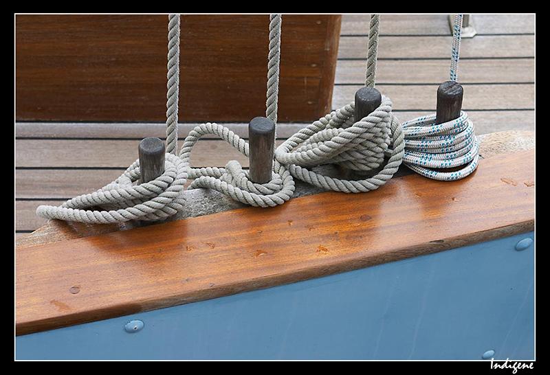 Les cordages lovés sur les taquets