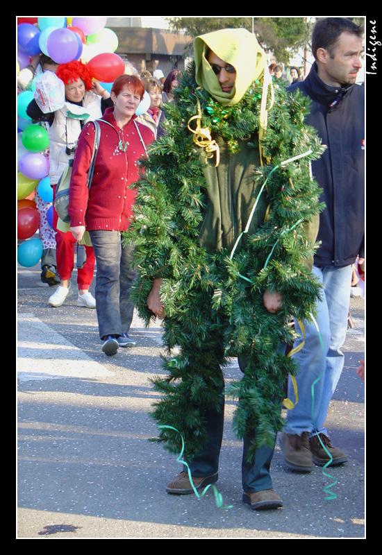 Déguisement en sapin de Noël