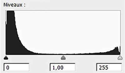 Illustration de l'histogramme d'un low-key