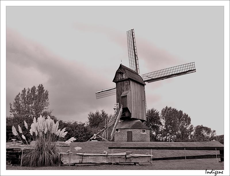 Moulin dans le nord