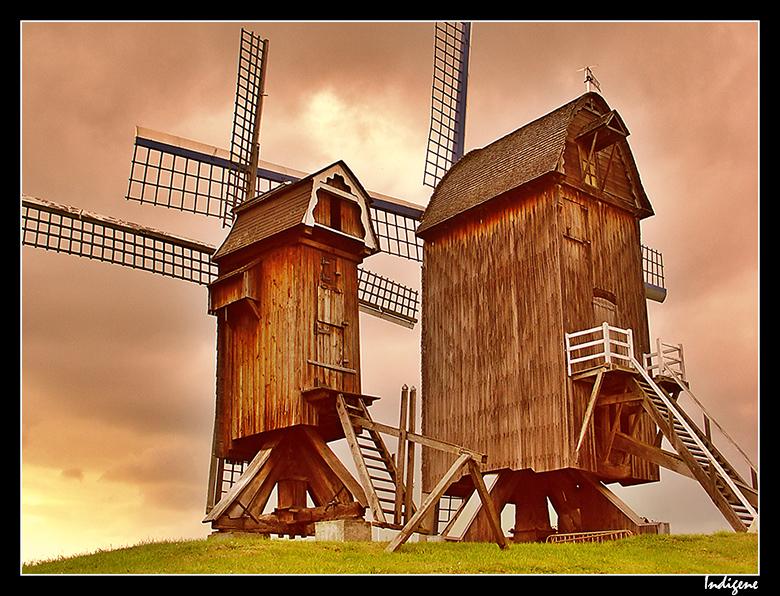 Moulins de Villeneuve d'Ascq