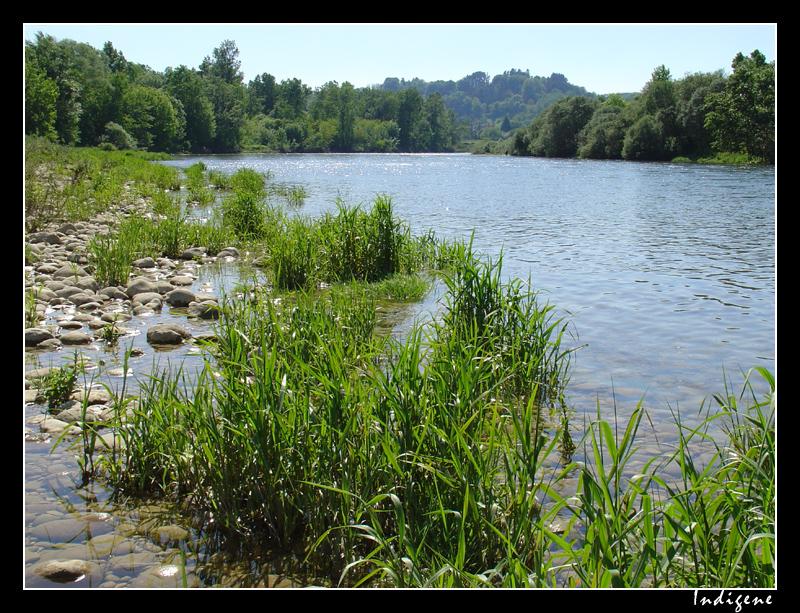 La rivière d'Ain et ses galets