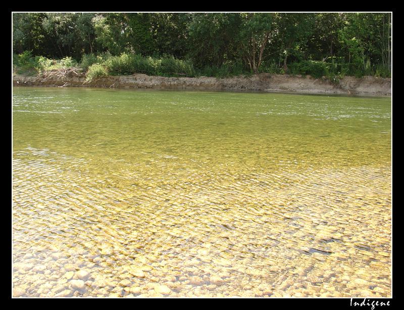 La rivière d'Ain
